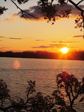 Photo: Beautiful lake sunset and pear blossoms at Eastwood Park in Dayton, Ohio.