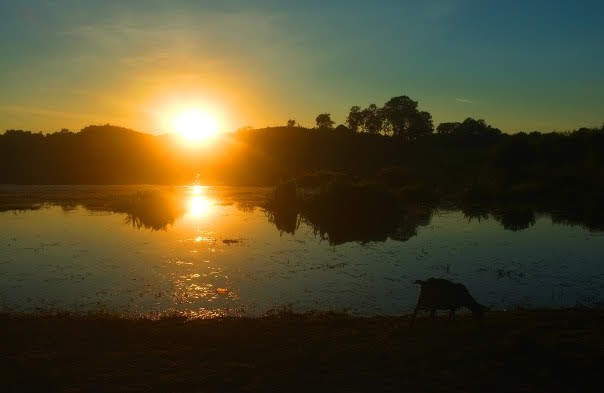 Mrauk U Lake