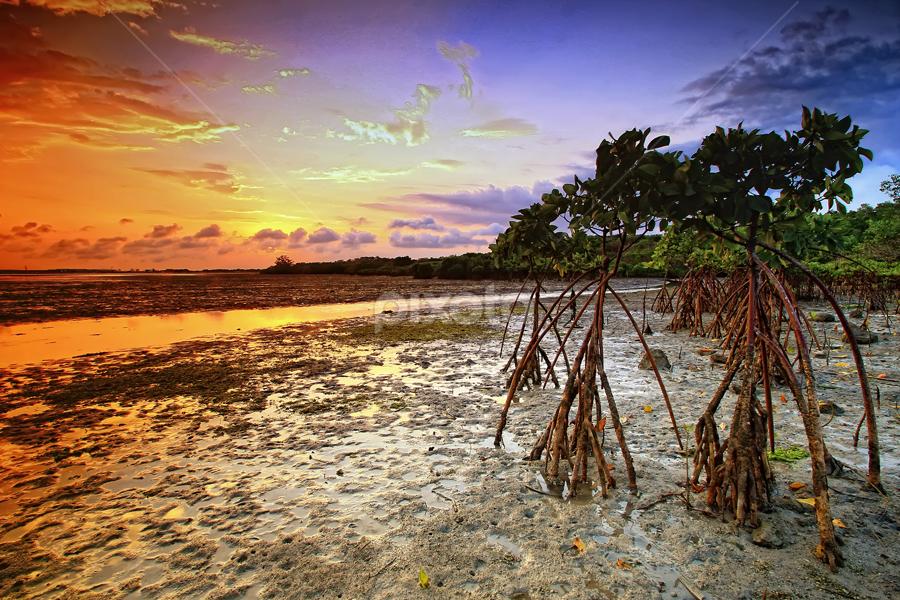 by Linggar Saputra I Wayan - Landscapes Beaches