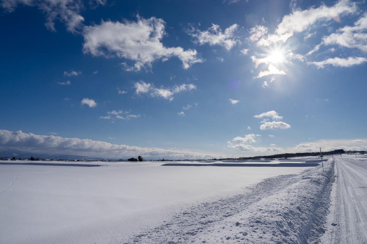 どこまでも広がる雪原