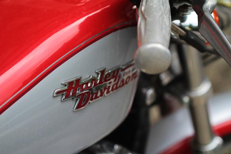 Harley_ Davidson_ di amoled