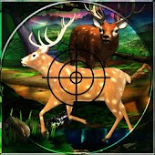 Deer Hunting Jungle War