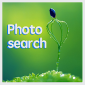 Image Search from Flickr