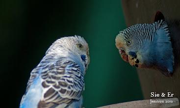 Photo: Sie & Er