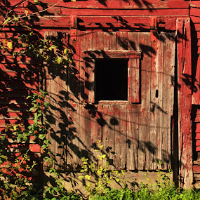Jerusalem Road by Mary Gerakaris - Buildings & Architecture Decaying & Abandoned ( architectural photography, artistic photography, barn, architectural detail, vermont, old building )