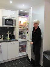 Photo: Separate freezer and larger fridge, faculty flat # 2
