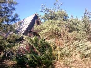 Photo: Abandoned house near Ostoros, in the jungle (2013)