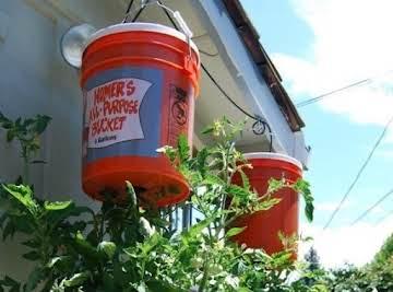 Waynes Topsy Turvy Tomato Planter And Alternatives Just A Pinch