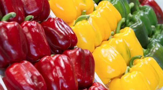 Agricultura 2000 pone en marcha la pizarra de precios