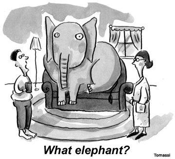 elephantinthelivingroom2.jpg