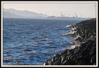 Photo: Looking north along the seawall