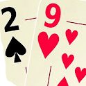 29 Card Game Champion : Free Card Game icon