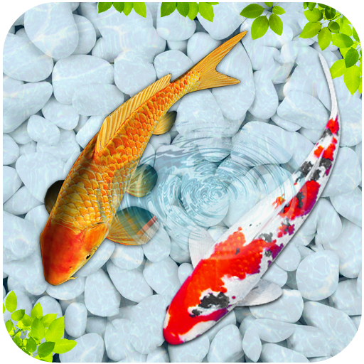 Fish 3D Live Wallpaper 2018 - Koi Wallpaper