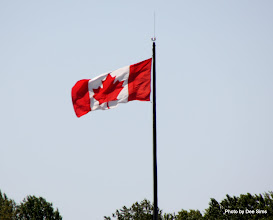 Photo: (Year 2) Day 327 -  The Lovely Canadian Flag