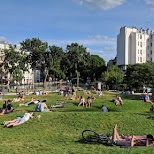 the French love to socialize at parks in Paris in Paris, Paris - Ile-de-France, France