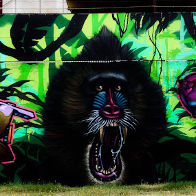 Angry animal by James Ganzer - City,  Street & Park  Street Scenes ( austin, spray, graffiti, art, paint )