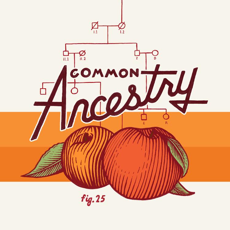 Logo of Cerebral Common Ancestry