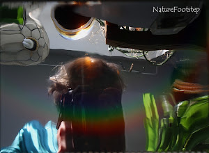 Photo: Mirror World in a rainbow, NF Photo 130224  http://nfbild2.blogspot.se/2013/02/mirror-world-in-rainbow.html
