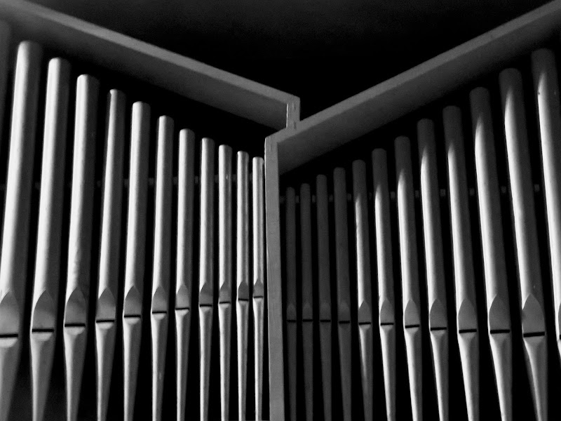 canne d'organo di mariellaturlon
