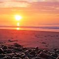 Ocean Sunset Live Wallpaper APK