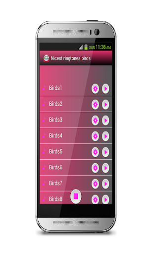 玩免費音樂APP|下載最好的鸟铃声 app不用錢|硬是要APP