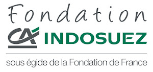 Fondation Indosuez