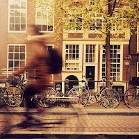 Nine million bicycicles di