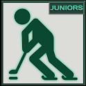 Ice Hockey World Juniors 2016 icon