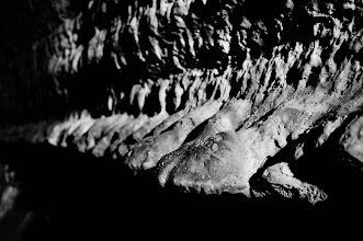 Photo: The lava forms many interesting shapes. These look like animal skulls to me.