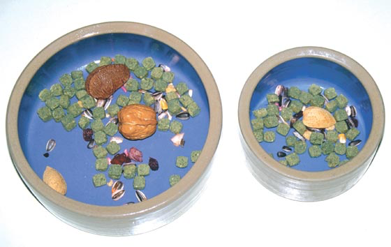 An example of the proper kinds, amounts and types of organic dry foods to teach a baby bird to accept, for macaw-sized birds on the left and Amazon-sized birds on the right