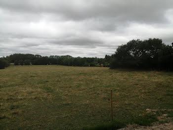 terrain à Varades (44)