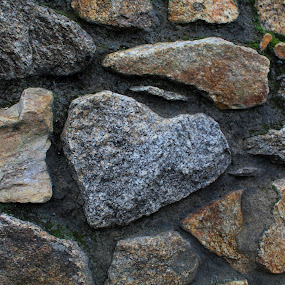 Heart of Stone by Morgan Bardon - Nature Up Close Rock & Stone ( love, valentines, wall, heart, stone )