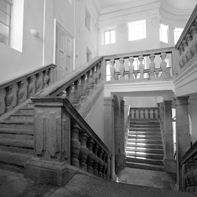 stairs by Brut Carniollus - Buildings & Architecture Other Interior ( renaissance, interior, b&w, stairs, stairwell, black and white, building, monotone, World, Beauty, Beautiful, Representing, Special, vertical lines, pwc,  )