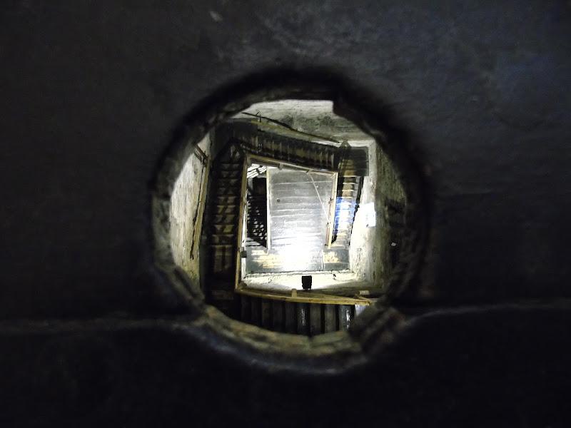 scala torre asinelli di gpaolos