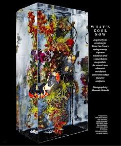Harper's BAZAAR Magazine- screenshot thumbnail
