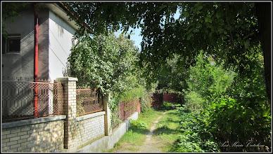 Photo: Intrarea Muzeului din Str. Mircea cel Batran - 2016.09.30