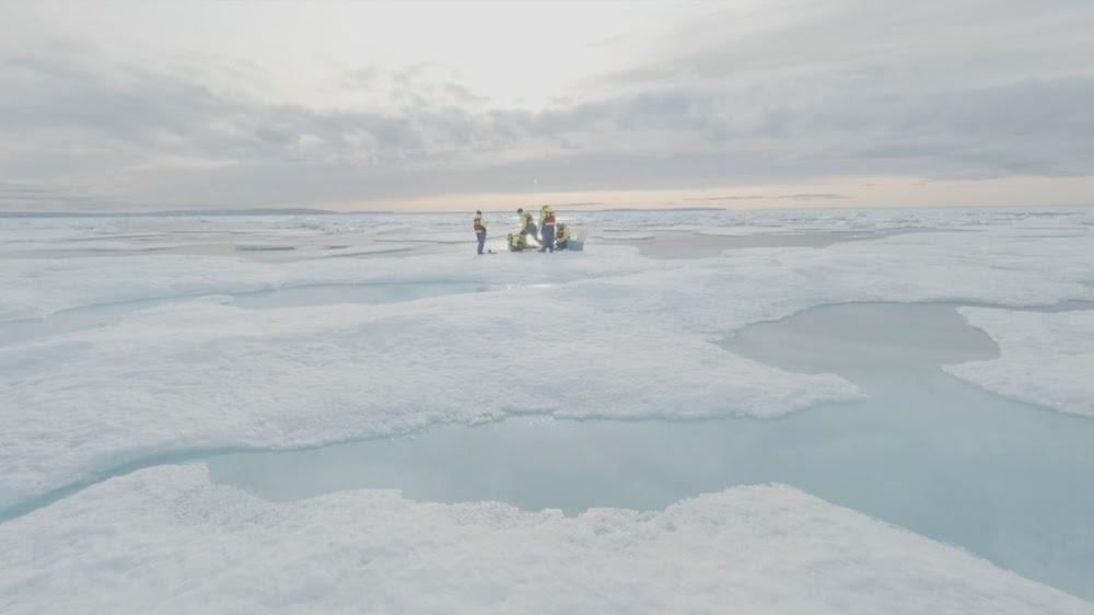 Wetenskaplikes is ontsteld oor hul mikroplastiek in die Arktiese ys