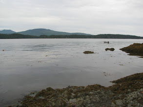 Photo: Helby Island looking East