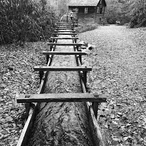 The Old Mill #2 by Theo Staszko - Black & White Buildings & Architecture