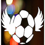 Soccer Match Icon