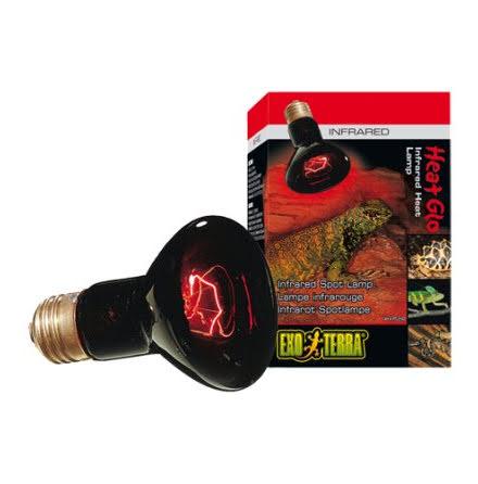 ExoTerra Infrared Basking Spot 50W R20 E27