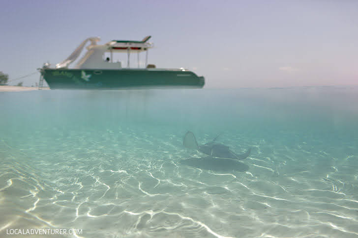 Half Moon Bay Turks and Caicos Things to Do.