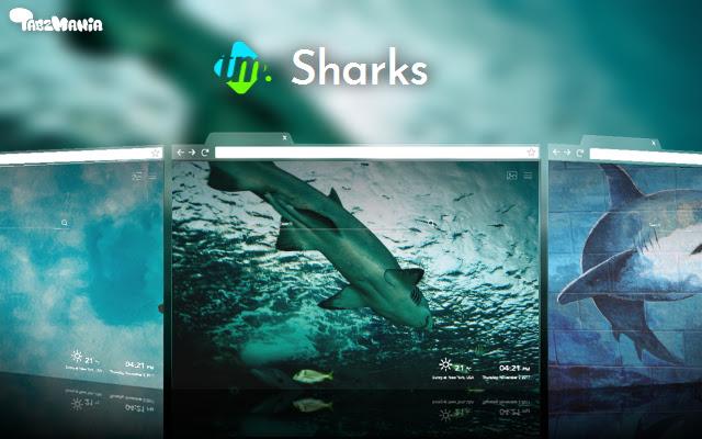 Sharks Tab Themes