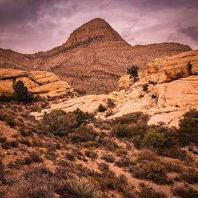 Turtlehead Peak by John Smith - Landscapes Mountains & Hills ( las vegas, redrock, mojave, desert, mountain, redrock canyon, nevada )