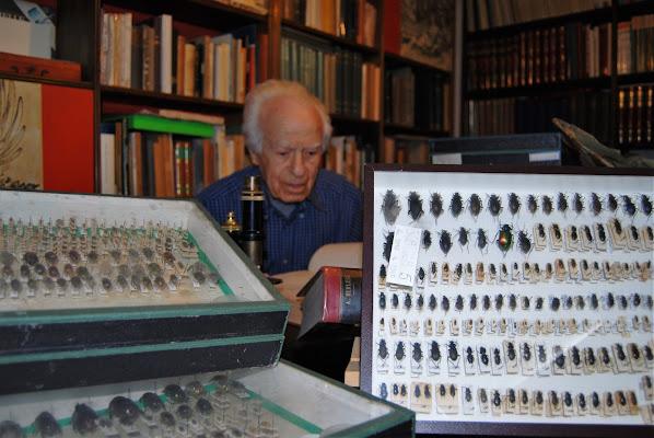 L'entomologo di mariano pinelli