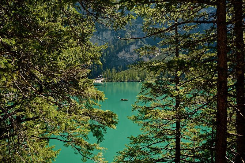 Il verde nel verde - Lago di Braies di beatrice_maccelli