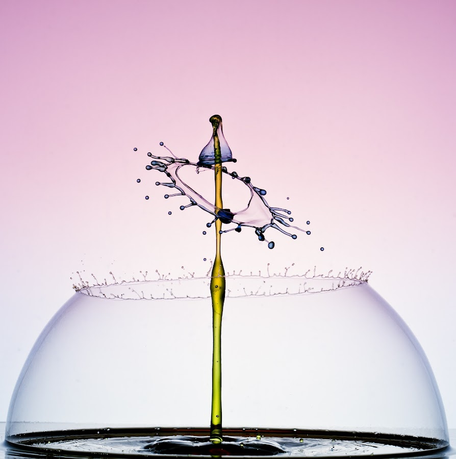 by Francois Loubser - Abstract Water Drops & Splashes ( water, reflection, splash, waterdrop, drop, rippled, abtract, circle, shape, bounce, drip, bubble, macro, liquid, splashing, fluid, droplet, fall, movement, ripple, collide, wet, motion, collision )