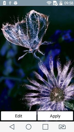 Water butterfly live wallpaper