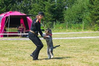 Photo: Alice i konkurrence DogDancing.