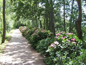 Photo: Die Schmachter See-Promenade im Seebad BINZ/ Rügen (siehe www.freie-ferienwohnung-binz.de und www.binz-zingst-kuehlungsborn.de )